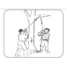 Kapesní větvořez