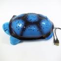 Magická nočná korytnačka